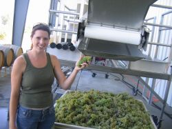 Ashley Campanella, Winemaker